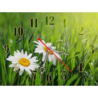Настінний годинник Свіжість ромашки, 30х40 см