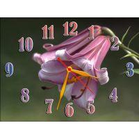 Настінний годинник Дзвіночки, 30х40 см