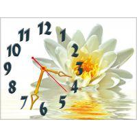 Настінний годинник Ніжний лотос, 30х40 см