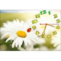 Настенные часы Летняя ромашка