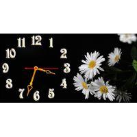 Настенные часы Ромашки на черном, 30х60 см