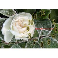Годинник настінний Троянда в снігу, 30х45 см