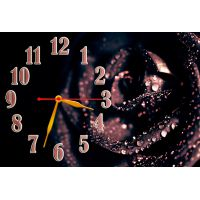 Настенные часы Роза в росе, 30х45 см