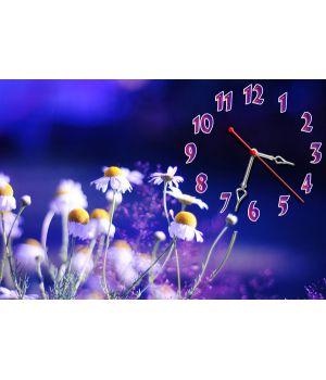 Настінний годинник Ромашки вночі, 30х45 см