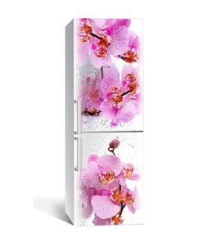 65х200 см, Наклейка на холодильник Орхидея Сакраменто