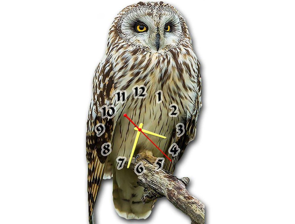 Обзор - Необычные настенные часы Сова