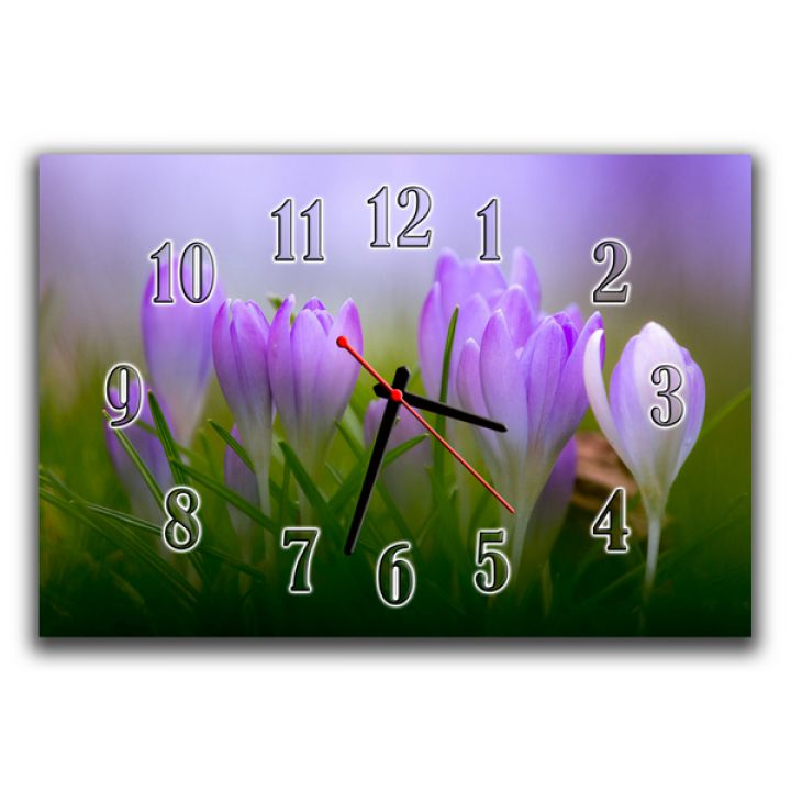 Настенные часы Весенние цветы, 30х45 см