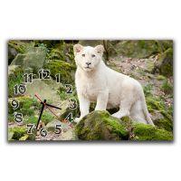 Настінний годинник Білий лев, 30х50 см