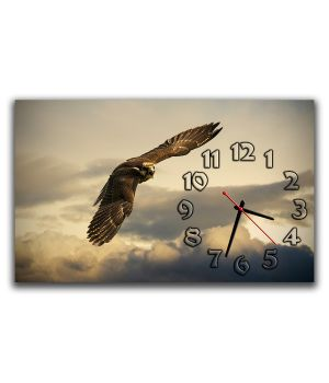 Настенные часы Полет, 30х50 см