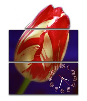 Модульные часы Красно-белый тюльпан