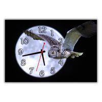 Настенные часы Летящая сова, 30х45 см
