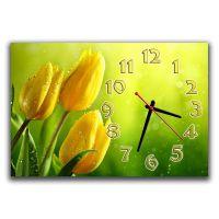 Настінний годинник Тюльпани на зеленому, 30х45 см