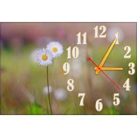 Настенные часы Цветок 68990, 30х45 см
