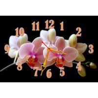 Настінний годинник Квіти 68991, 30х45 см