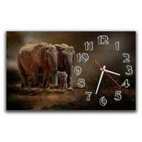 Настінний годинник Слони 69031, 30х50 см