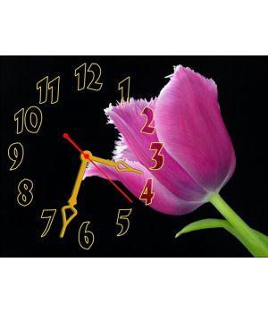 Настінний годинник Тюльпан 69042, 30х40 см