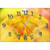 Настенные часы Бабочка 69003, 30х45 см