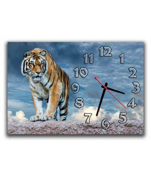Настінний годинник Тигр 68968, 30х45 см