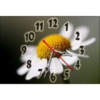 Настінний годинник Ромашка 68979, 30х45 см