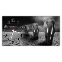Настенные часы Слоны 69019, 30х60 см