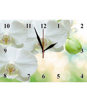 25х35 см, Скляний настінний годинник, 77929