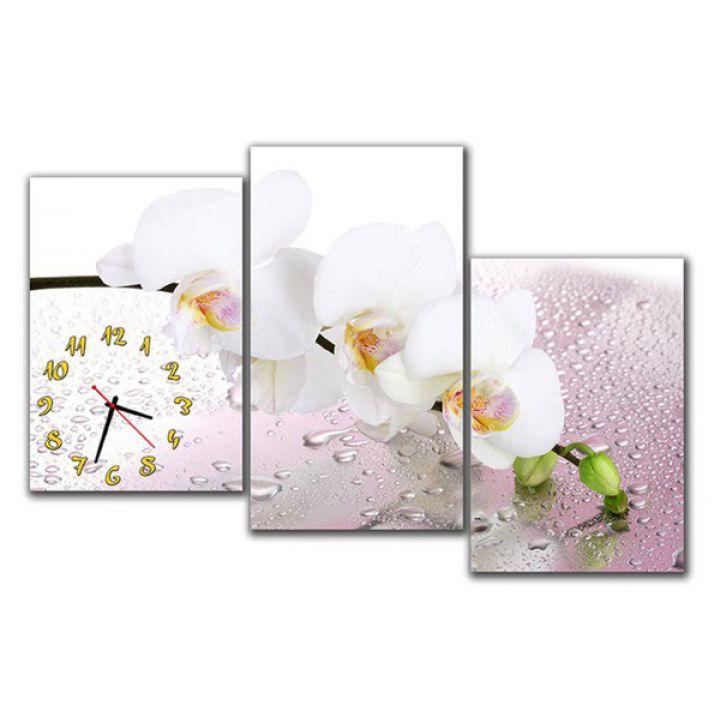 Модульные картины с часами Белая Орхидея