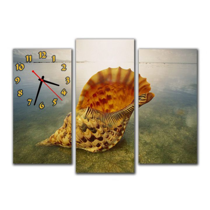 Модульные настенные часы Ракушка