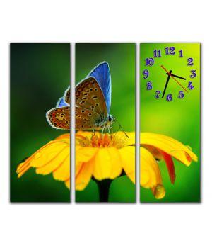 Модульний настінний годинник Чарівна метелик