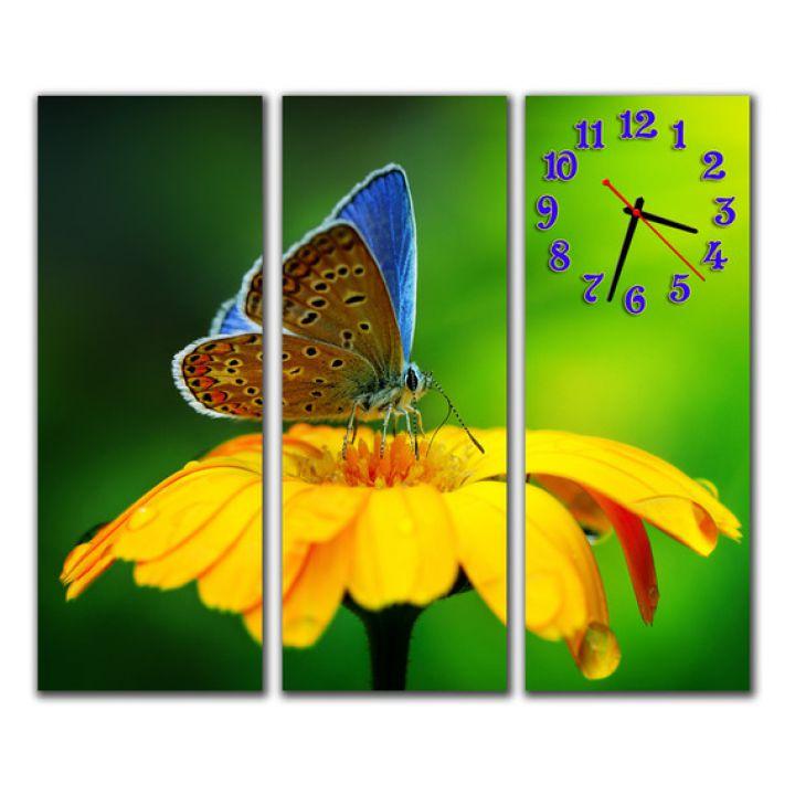 Модульные настенные часы Прелестная бабочка