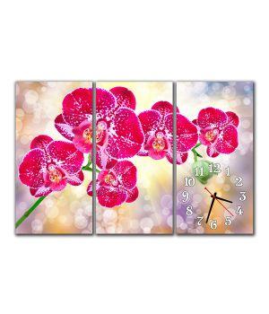 Модульные настенные часы Малиновая Орхидея