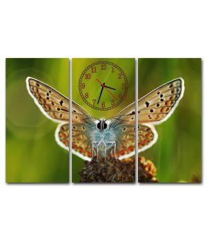 Модульные настенные часы Красота Бабочки