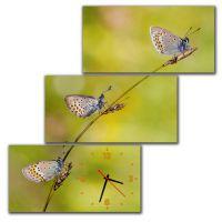 Модульные настенные часы Нежные Бабочки