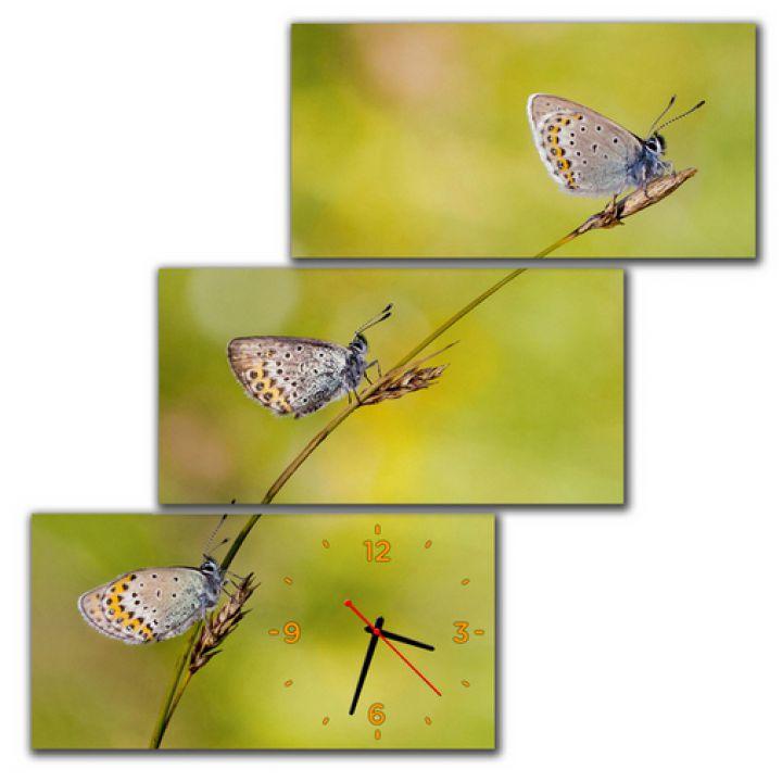 Модульний настінний годинник Ніжні Метелики