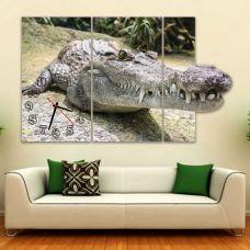 Модульные картины с часами Крокодил