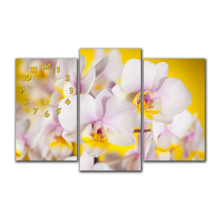 Модульные настенные часы Белые орхидеи