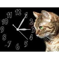 Часы Загадочная Кошка, 30х40 см