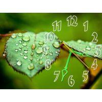 Часы Изумрудная Свежесть, 30х40 см