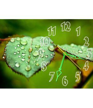 Часы Изумрудная Свежесть