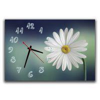 Настенные часы Блеск ромашки, 30х45 см