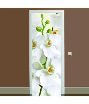 Наклейка на дверь Орхидея, 65х200 см