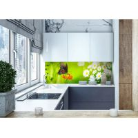 Виниловая наклейка фартук-скинали на кухню Бабочка 600х2500 мм салатовый