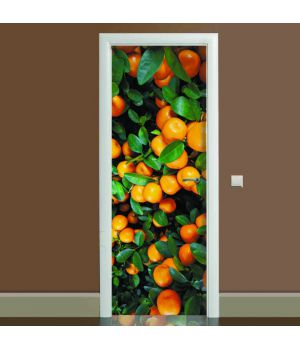 Наклейка на дверь Цитрус 01, 65х200 см