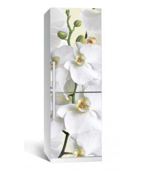 Наклейка на холодильник Орхидея 650х2000 мм