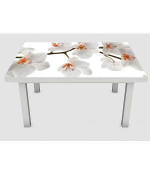 Наклейка на стіл Гілка орхідеї 01, 60х120 см