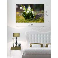 Картина на холсте 38х58 На цветочной поляне