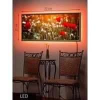 LED Картина Цветущие маки