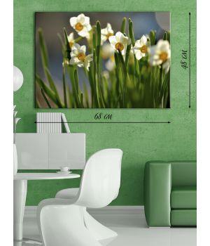 Фотографическая картина Цветы