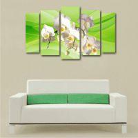 Белые орхидеи на зеленом фоне