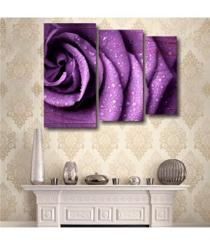 Фиолетовая роза. Триптих
