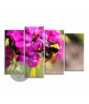 Картина Шмель и цветок